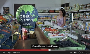 teaserbild Greenbees